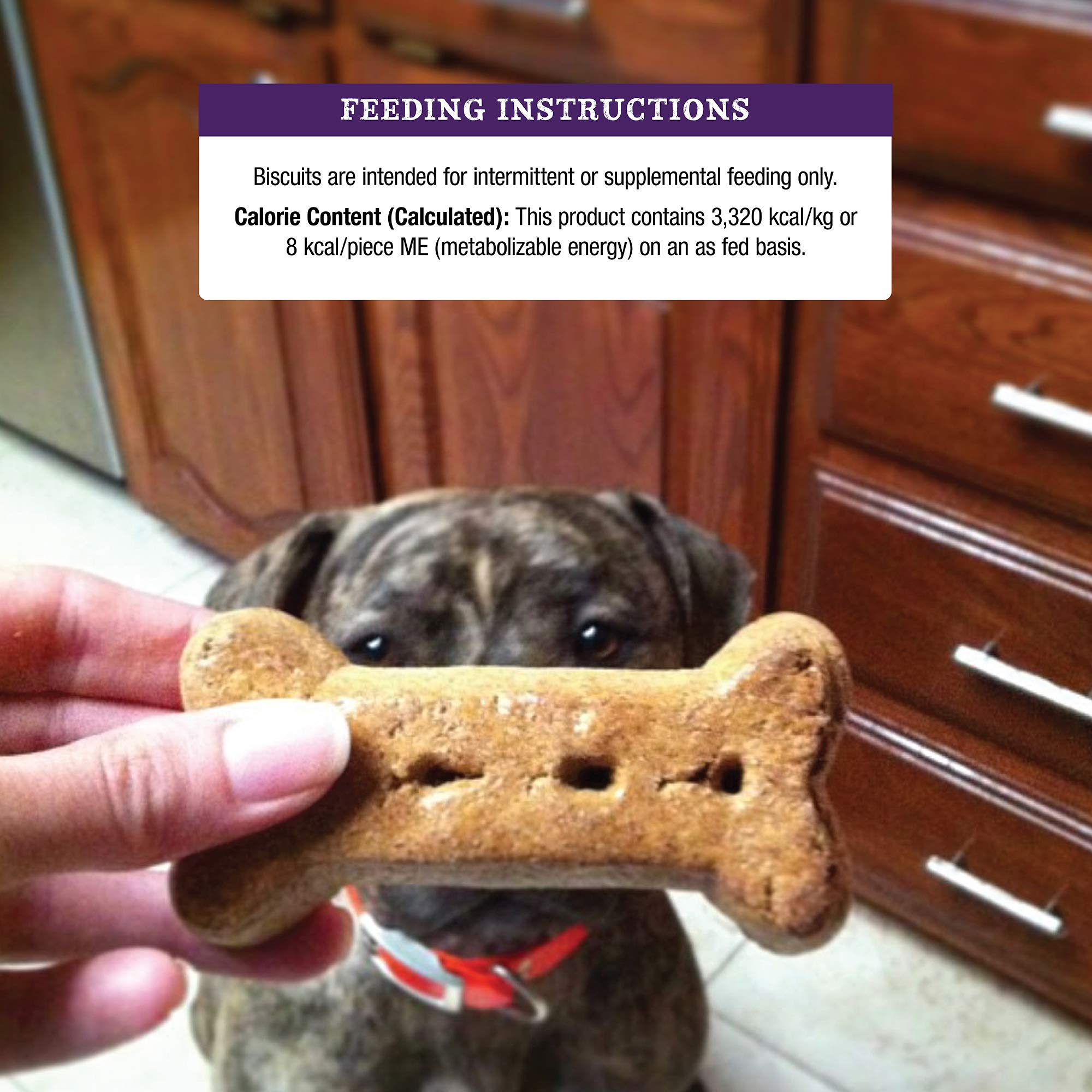 Old Mother Hubbard Classic Crunchy Natural Puppy Treats, Mini Dog Biscuits, 5-Ounce Bag by Old Mother Hubbard (Image #6)