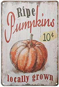 Metal Tin Signs Funny 10 Cent Ripe Pumpkins Locally Grown Retro Vintage Kitchen Alumnium Signs Farm Decorative Country Iron Painting Decoration 8x12inch For Home Bar Pub Garage Cafe Wall Decor