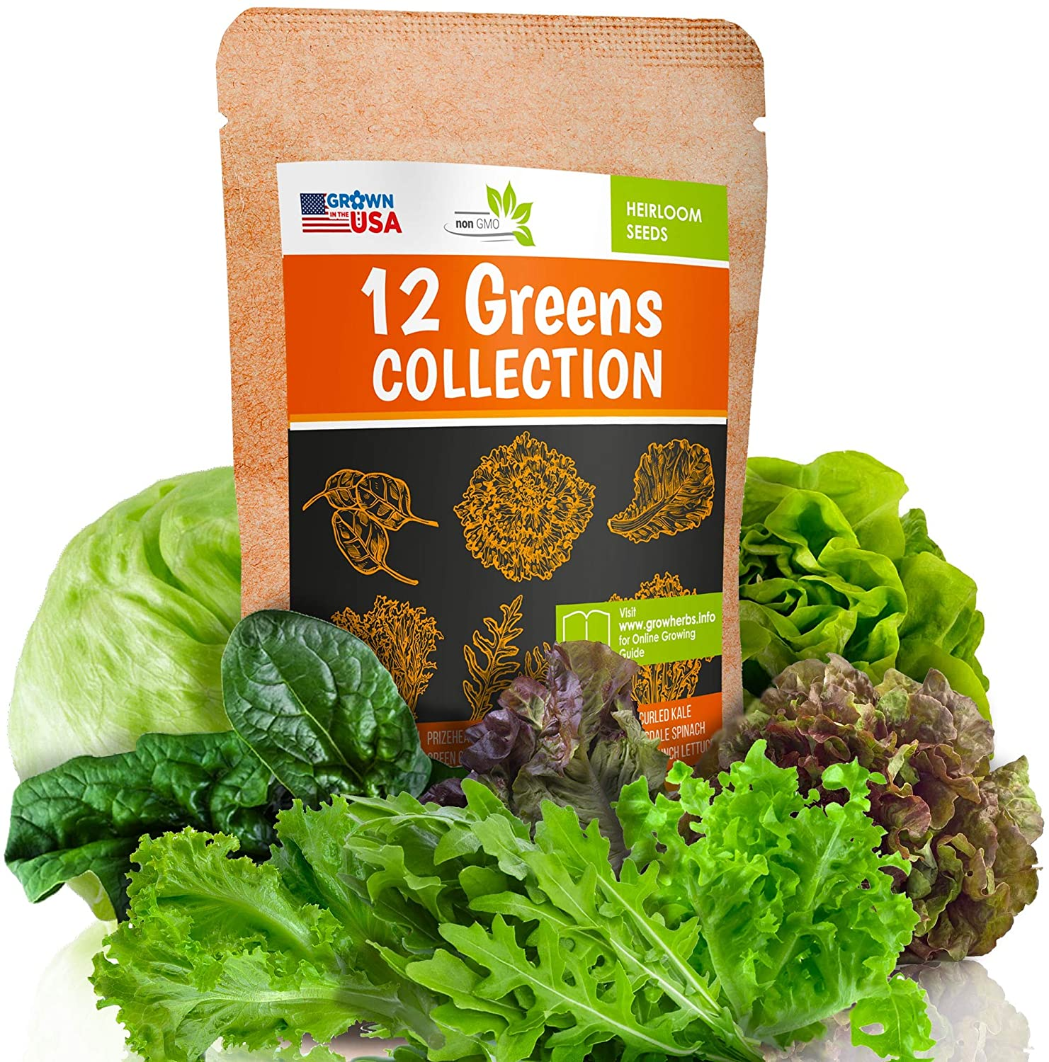 12 Lettuce and Greens Seed Pack - Heirloom and Non GMO, Grown in USA - Indoor or Outdoor Garden - Iceberg, Arugula, Kale, Spinach, Bibb, Butter, Green Oakleaf, Giant Collard, Red Romaine & More