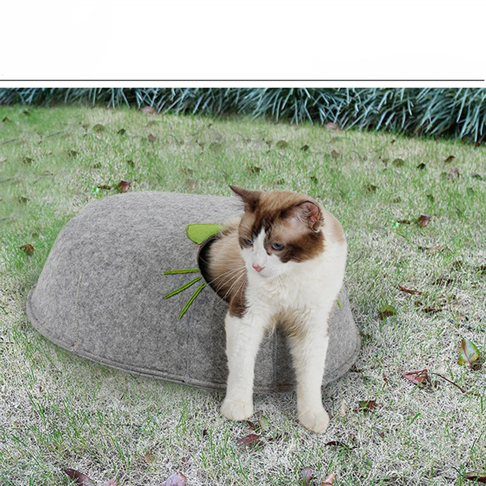 MUJING - Caseta de Fieltro para Mascotas, Gatos, Gatos, Gatos, Gatos, pequeñas, 50 x 47 x 20 cm, Gris: Amazon.es: Deportes y aire libre