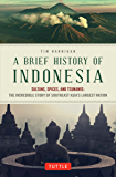 Brief History of Indonesia: Sultans, Spices, and Tsunamis: The Incredible Story of Southeast Asia's Largest Nation