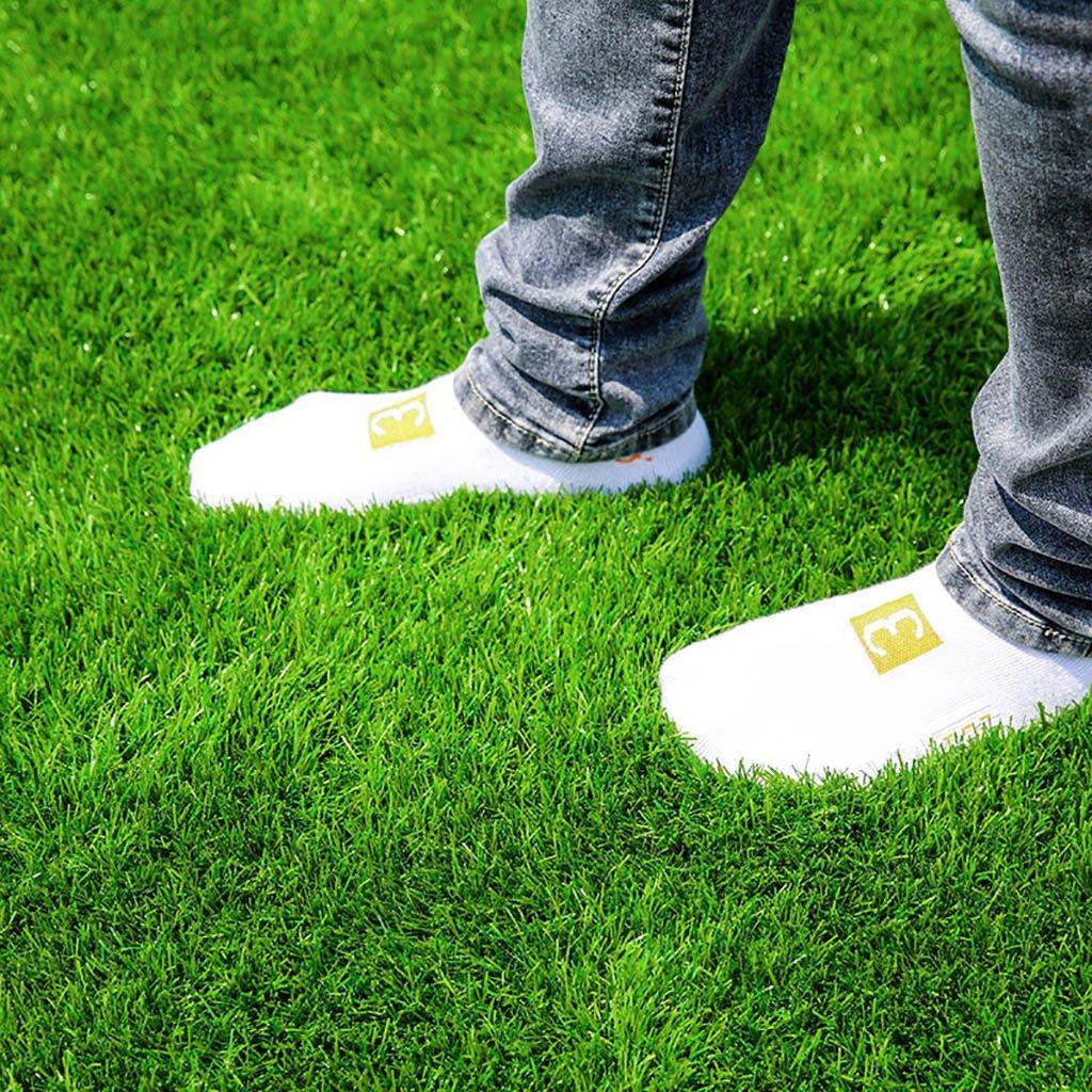 WENZHE 人工芝芝生 ガーデンターフ 人工芝高密度格安3色、幅2メートル、厚さ4種類 ( 色 : L l , サイズ さいず : 2*2m ) B076Z66SQL 12367 2*2m|L l L l 2*2m