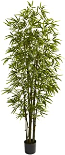 Nearly Natural 5421 Bamboo Tree, 7-Feet, Green by Nearly Natural