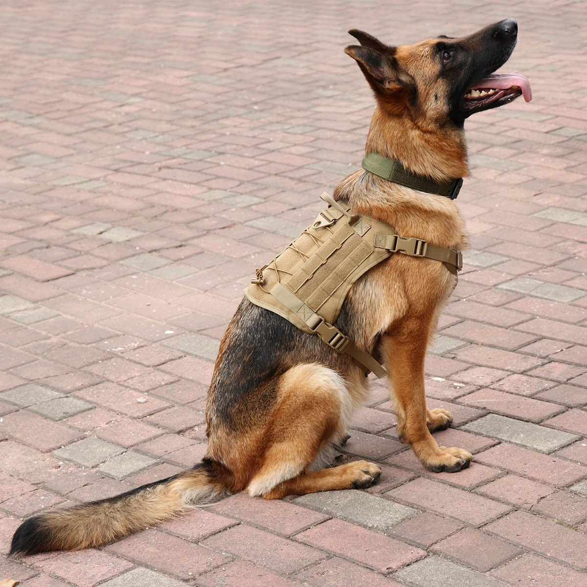 Xidan Tactique Service Chien Gilet Patrouille Militaire K9 Chien Harnais Molle Chien Gilet Harnais avec Poign/ées