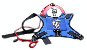 Balón De Fútbol 2be2e37eba025