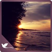 Mesmerizing Sunset Waves