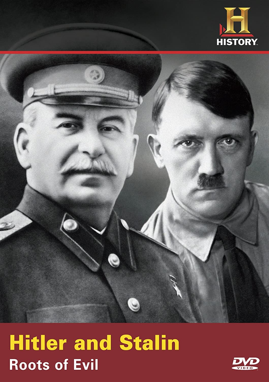 a comparison of hitler and stalin in their rise to power Hitler vs stalin: rising to power overview hitler and stalin were both profound leaders in their rise to power through communism both are notoriously responsible for many deaths, a crash in their country's economy, and many other ethically controversial situations.