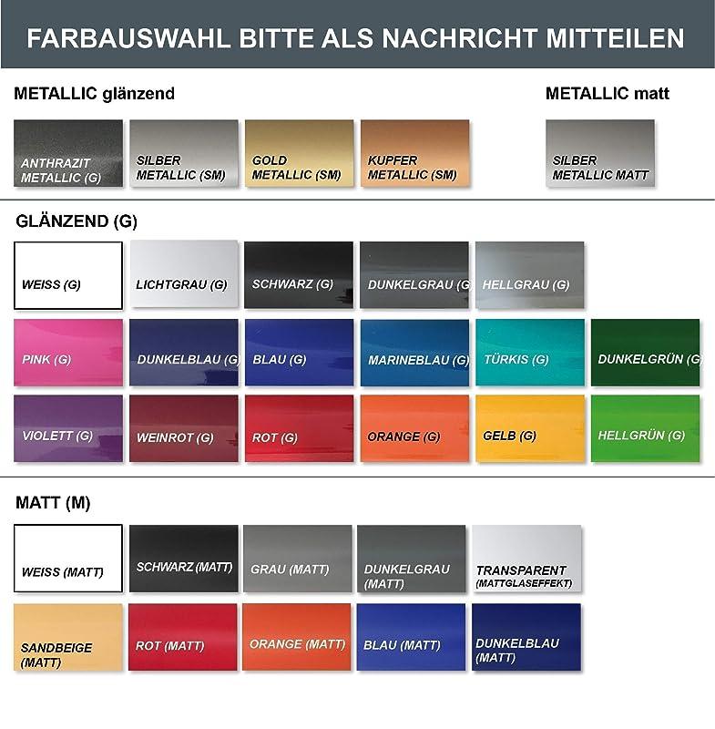 Tuning Aufkleber ANSAUGBEREICH f/ür Vespa Lambretta Roller retro Wunschgr/ö/ße und Farbe