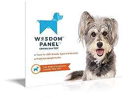 Wisdom Panel 2.0 - Test ADN pour chien