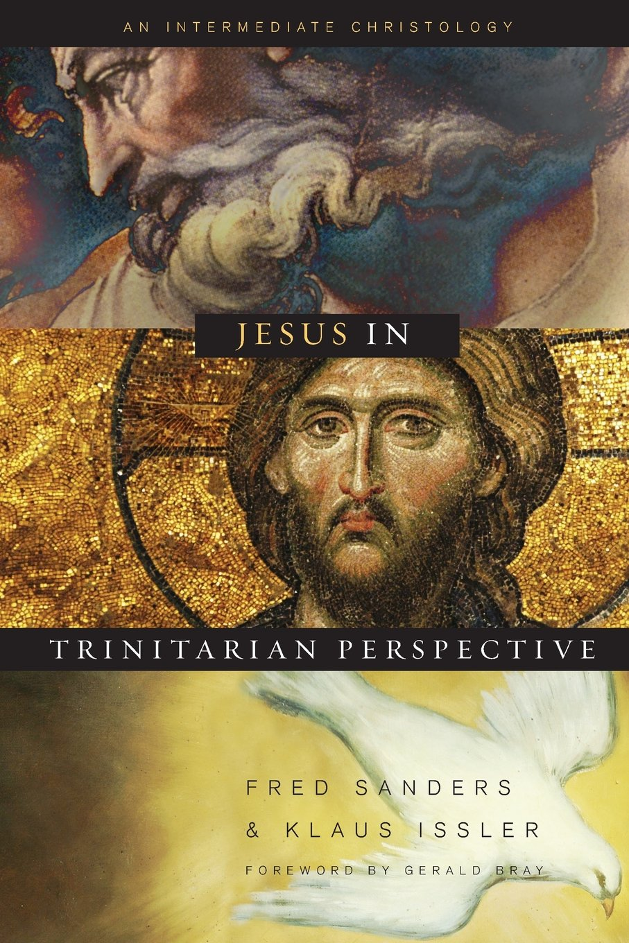 Download Jesus in Trinitarian Perspective: An Intermediate Christology pdf epub