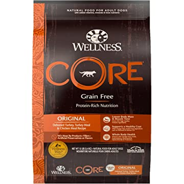 Wellness Core Natural