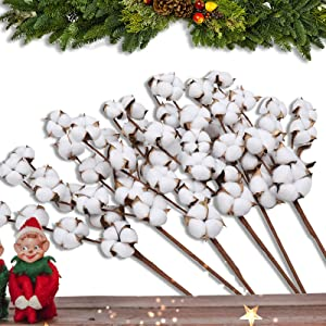 Lyrccoa Cotton Stems 6 Pack with 11 Cotton Balls Per Stem 29 Inch Cotton Branches Farmhouse Decor Fall Decorations for Rustic Home, Office, Hotel, Floral Filler Wedding Centerpieces…