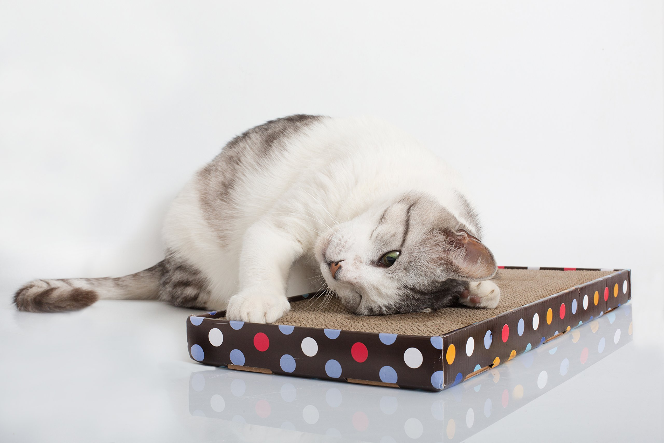 NOY'S PETS Polka Dots Cat Scratcher. Special Dense Corrugated Cardboard Extra...