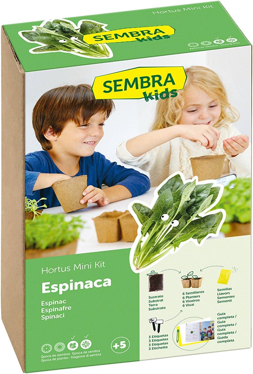 SEMBRA - juego educativo, Kit huerto Espinaca