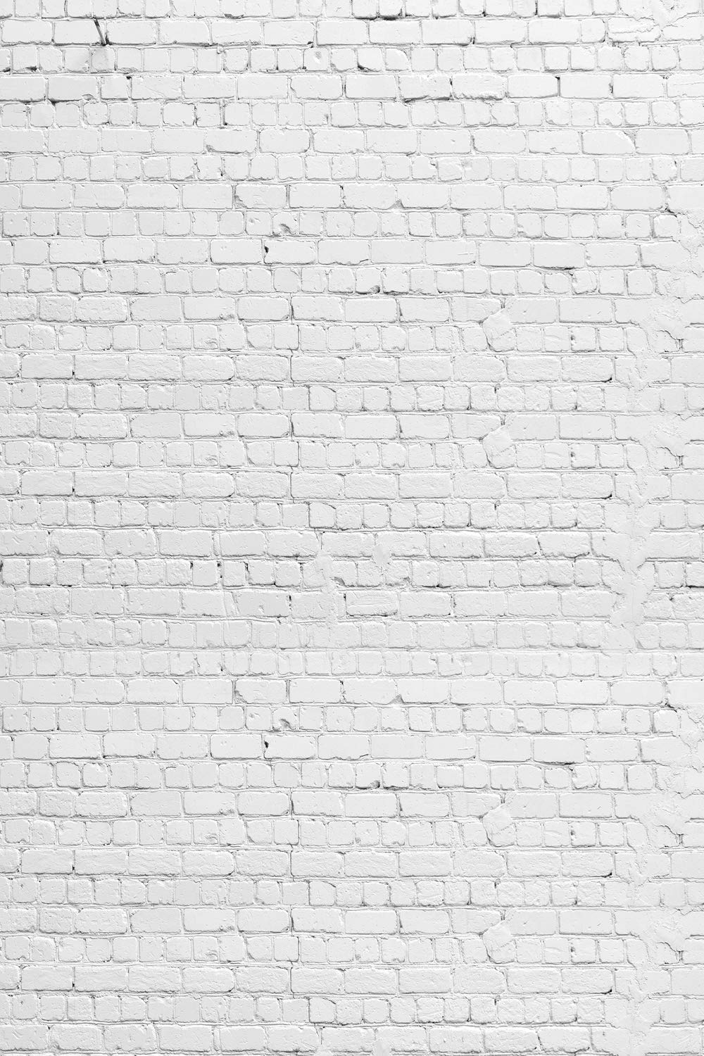 HUAYI 79'' x10ft Vintage White Brick Wall Photography Backdrop Vinyl Background for Pictures D-2504 by HUAYI