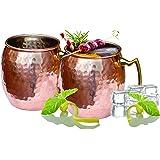 Dozenegg Stainless Steel Copper Moscow Mug 16 Oz Capacity Set of 2