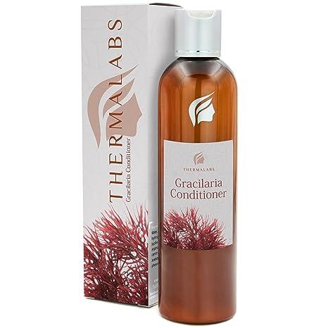 Acondicionador a las algas Gracilaria para el tratamiento contra la pérdida del cabello, natural,