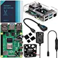 Vilros Raspberry Pi 4 Basic Kit with Clear Transparent Fan Cooled Case 4GB