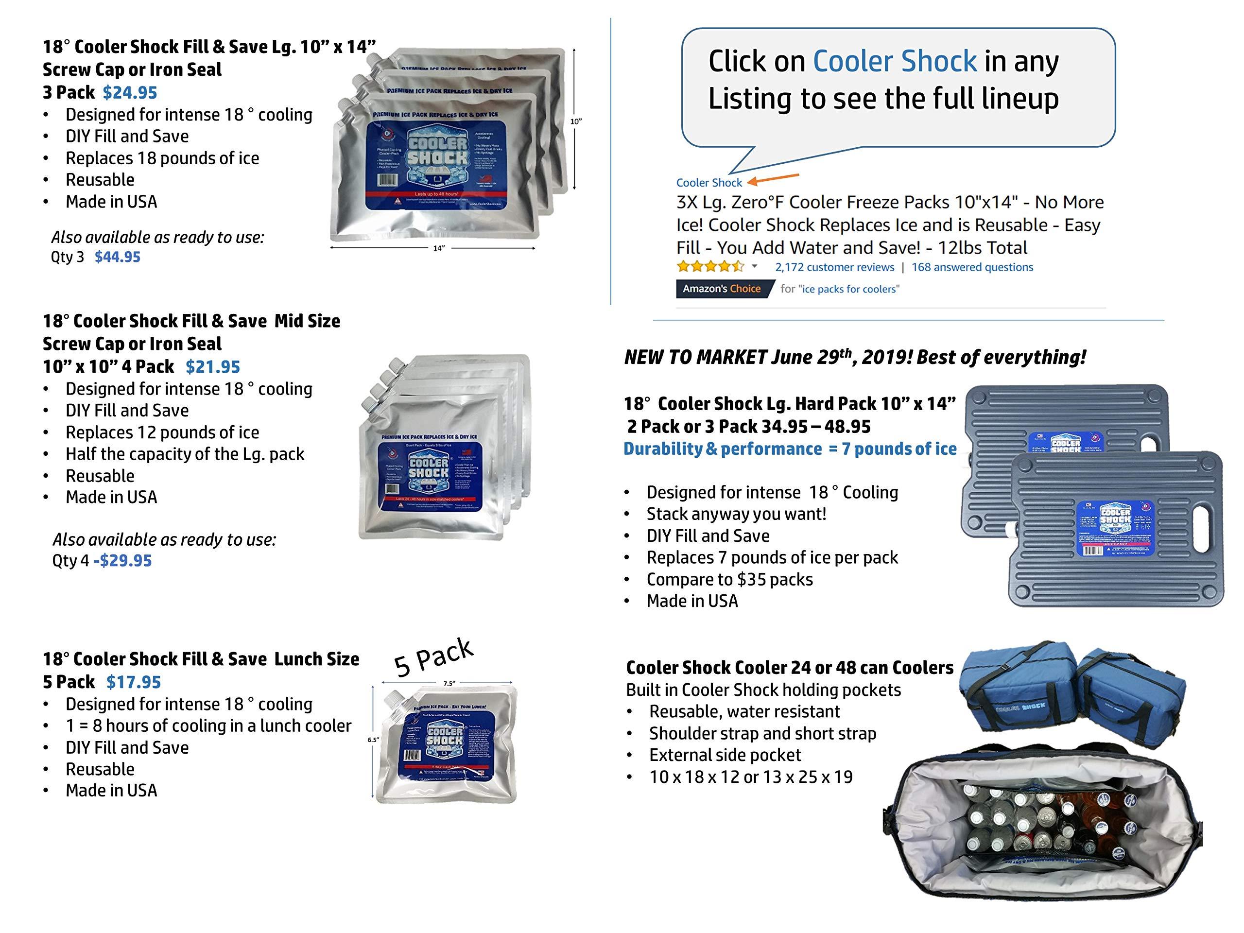 "Cooler Shock LG Zipper Reusable Cooler Ice Packs Replace Ice 10/"" x 14/"""