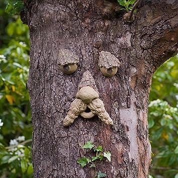 Rostro para árbol, estatua decorativa de jardín, diversión para niños, ideal como regalo: Amazon.es: Jardín
