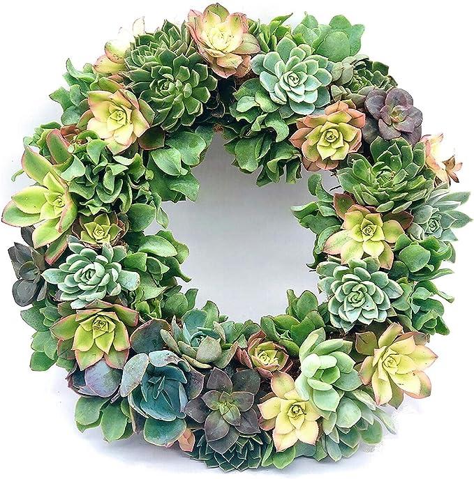 Succulent wreath  Felt Flower Wreath  Gold Wreath  Gold Hoop Wreath  succulent gift   succulents  succulent lover  spring wreath