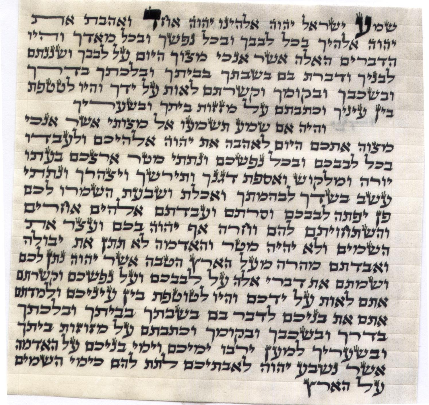 Judaica Kosher 7cm Mezuzah Scroll 2.8 Inch klaf Mezuza Parchment by Judaica