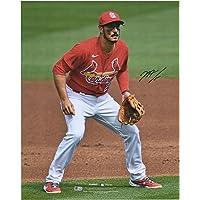 """$112 » Nolan Arenado St. Louis Cardinals Autographed 16"""" x 20"""" Fielding Stance Photograph - Autographed MLB Photos"""