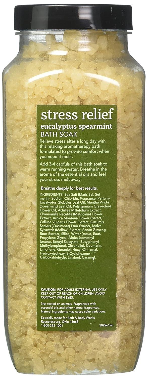 Amazon.com : Bath and Body Works Eucalyptus Spearmint Bath Soak ...
