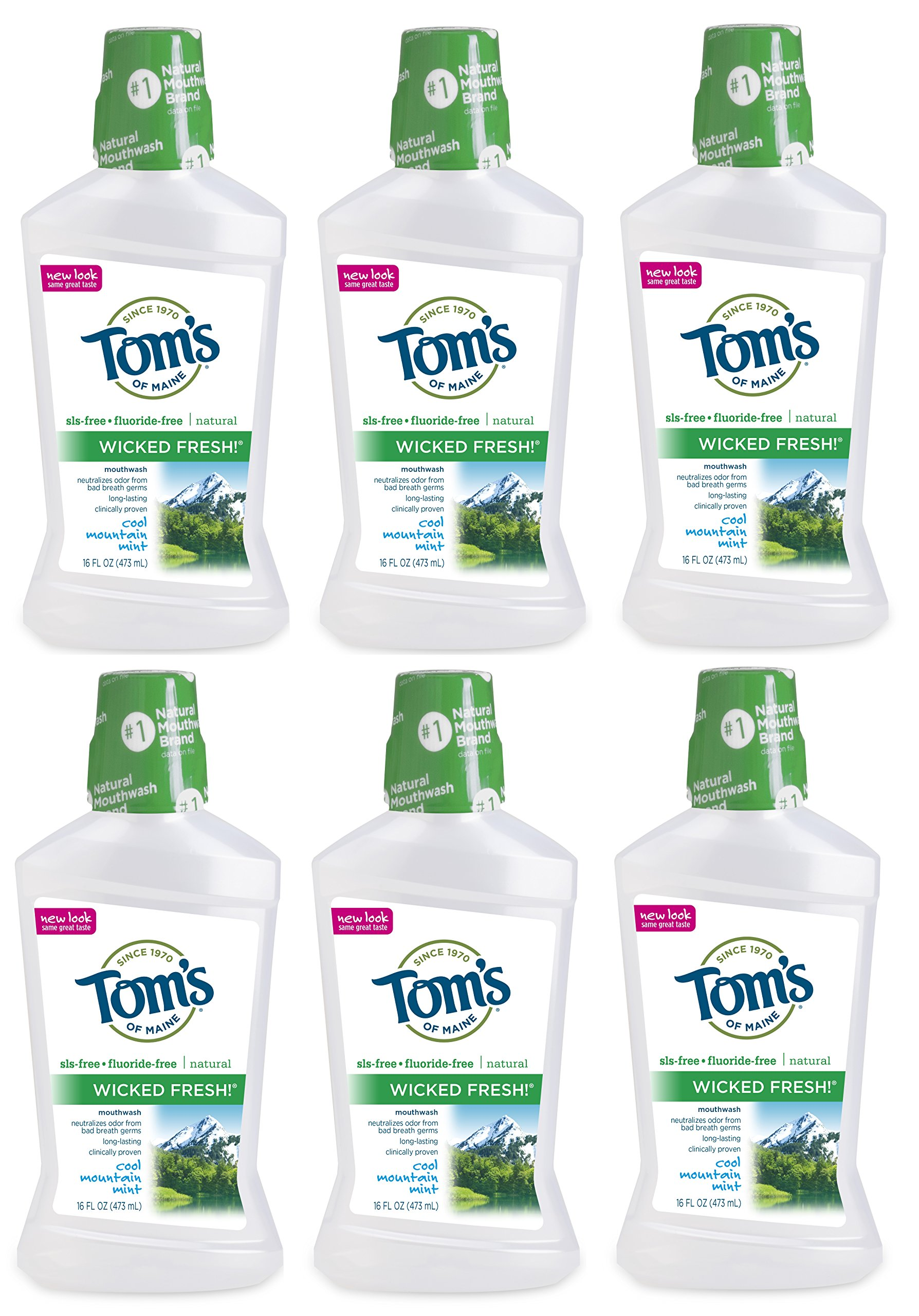 Tom's of Maine Long Lasting Wicked Fresh Cool Mountain Mouth Wash Bottle, Mint, 16 Ounce (Pack of 6)