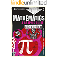 Introducing Mathematics: A Graphic Guide (Introducing...) book cover