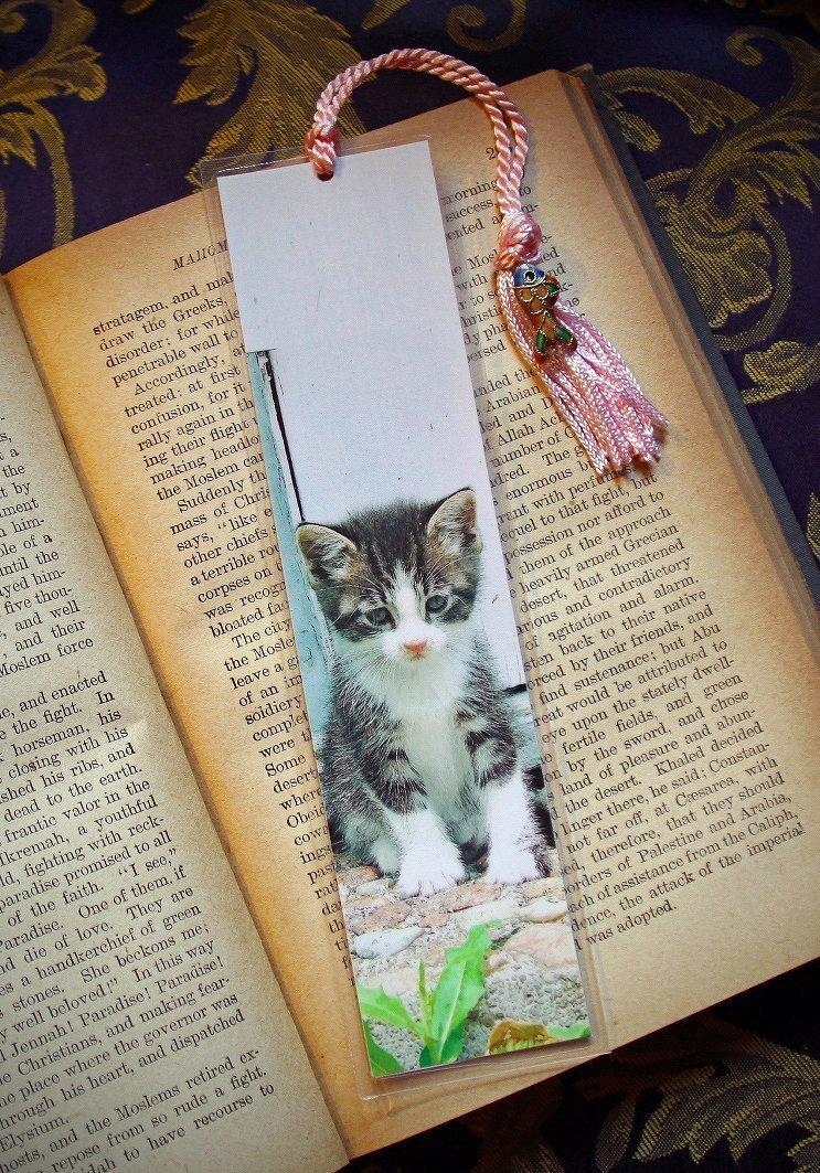 Gershwin the Sad Lonesome Eyes Looking Kitty Cat Kitten Photo Bookmark w/ Cloisonne Fish Beads Fine Art Photography Photo Laminated Handmade Bookmark