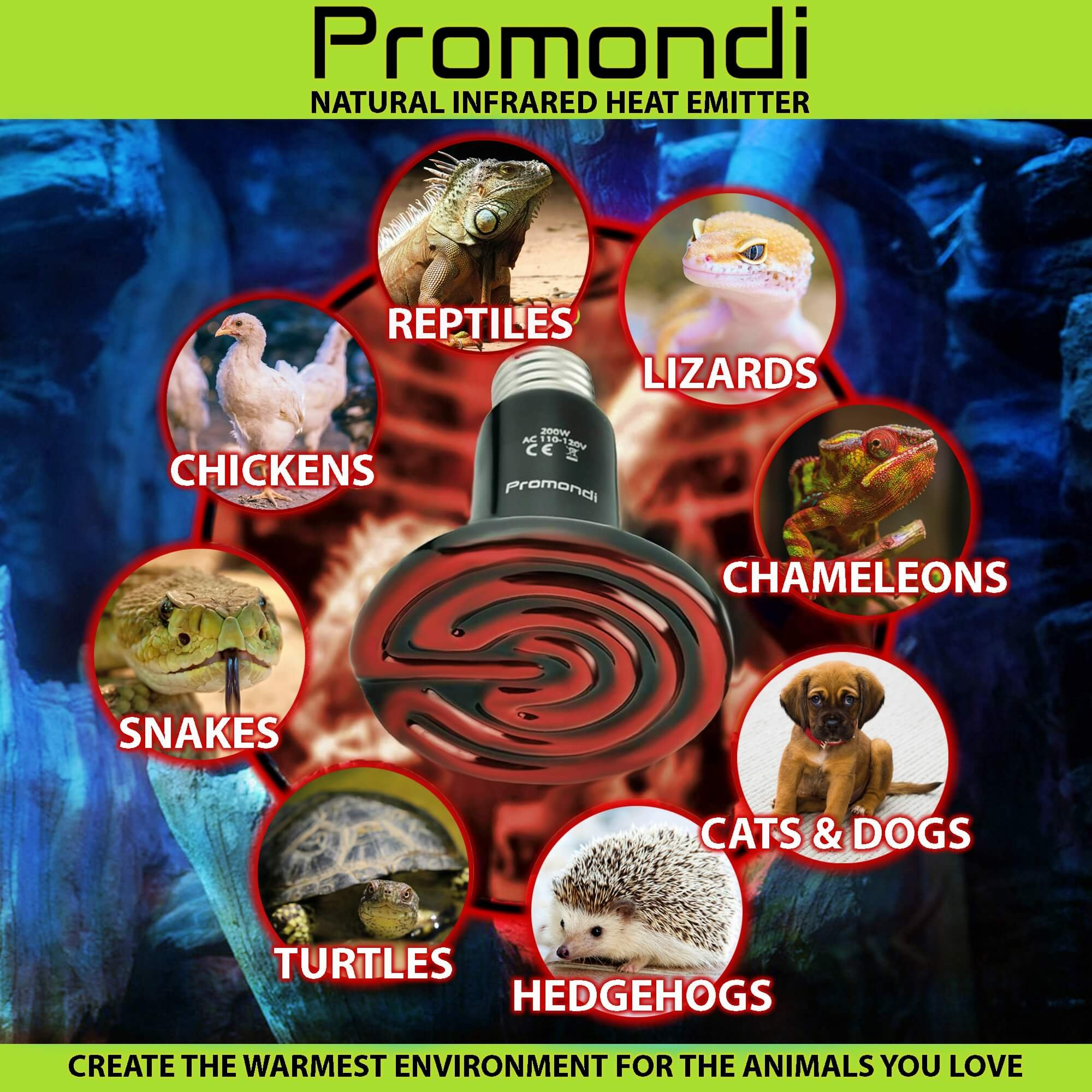 Ceramic Infrared Heat Emitter Lamp 200W | Reptile Brooder Chicken Coop Outdoor Pet Heater Bulb | 20,000+ Hours Power Lamps by Promondi by Promondi (Image #2)