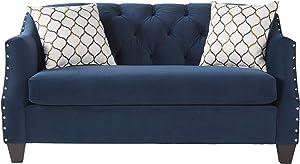 Roundhill Furniture Moselle Transitional Modern Velvet Tufted Love Seats, blue