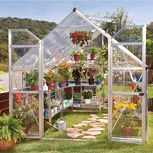 palram 8 x 12ft balance silver greenhouse with panels and twinwall on roof clear