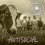 Antisocial (English Version)