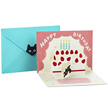 Image Unavailable Not Available For Color Hallmark Pop Up Birthday Greeting Card