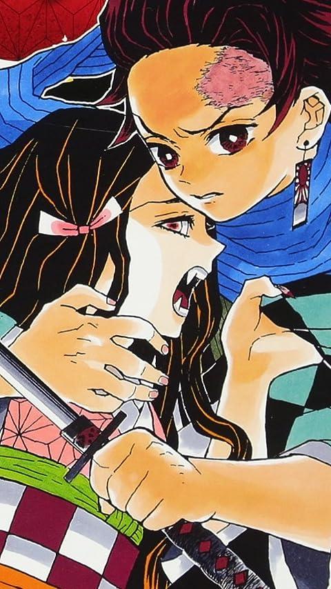 鬼滅の刃 竈門 禰豆子(かまど ねずこ),竈門 炭治郎(かまど たんじろう) XFVGA(480×854)壁紙画像