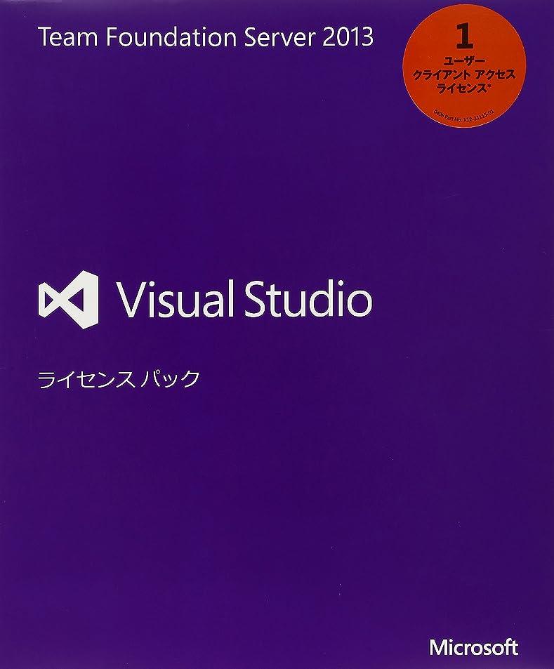 すずめ把握未知のMicrosoft Visual Studio Professional 2013英語 アップグレード版