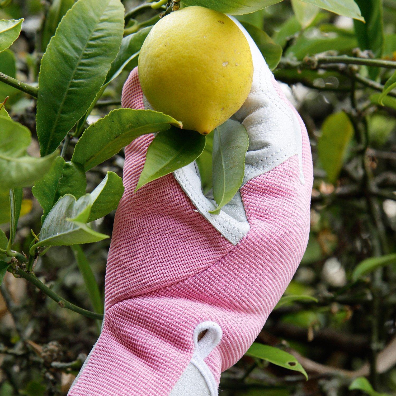 Ideal for Garden and Household Tasks Safe for Pruning Roses Medium Womens//Small Mens Best Gift Idea! Blue Slim-fit Work Gloves Gardening Gloves -