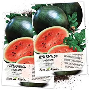 Seed Needs, Sugar Baby Watermelon (Citrullus lanatus) Twin Pack of 100 Seeds Each Non-GMO