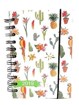 lagom Agenda diaria 2019 fantasía en Espiral 12 meses formato de bolsillo 10 x 15 cm, color TROPICAL