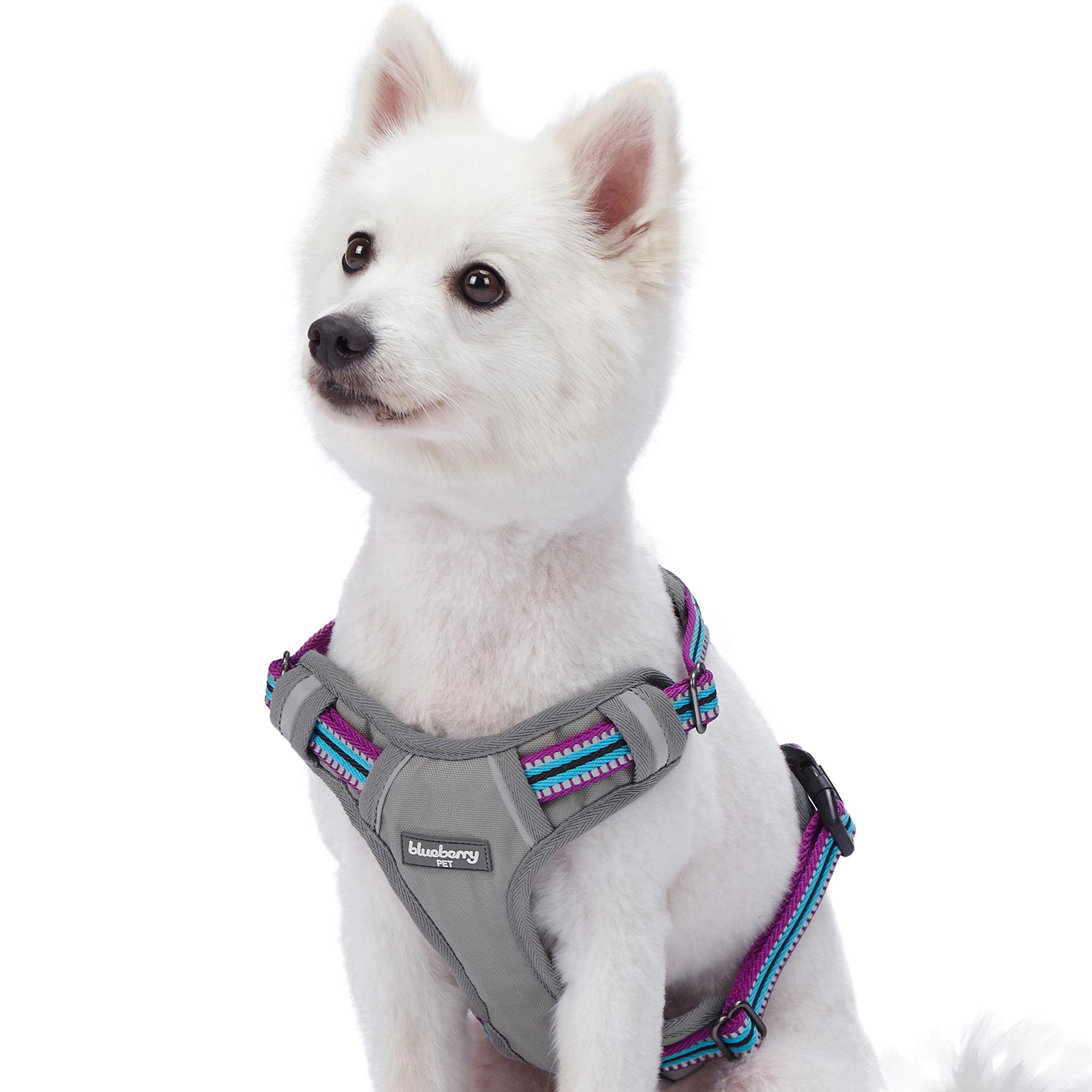 Blueberry Pet 9 Colors Soft & Comfy 3M Reflective Multi-Colored Stripe Padded Dog Harness Vest, Chest Girth 17.5''-21'', Neck 14.5''-20.5'', Violet & Celeste, Small, Mesh Harnesses for Dogs
