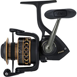 7 Best Spinning Reel Under $50 In 2020 - Expert's Guide 1