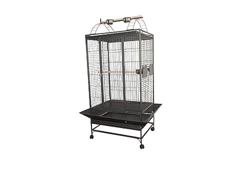 Loro jaula Jaco 99 x 84 x 167 cm: Amazon.es: Productos para mascotas