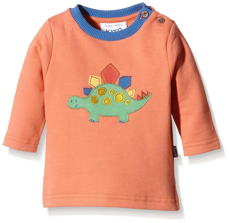Kite Baby Boys Dinosaur Sweatshirt Long Sleeve Sweatshirt BB759