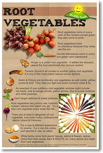 amazon com healthy foods root vegetables new nutrition poster
