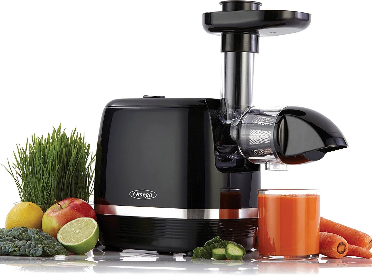 Omega H3000D Cold Press 365 Juicer Slow Masticating Extractor
