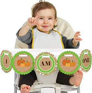 Big Dot of Happiness Pumpkin Patch 1rst Birthday Highchair Decor - I Am One - First Birthday High Chair Banner