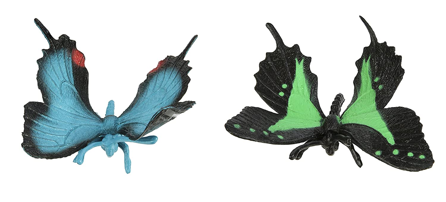 For Ages 3 And Up 68450 White Angled Sulphur Safari Ltd Butterflies TOOB With 8 Hand Painted Toy Figurine Models Including a Red Glider Anaea Clytemnestra and a Papilio Garleppi Butterfly Evenus Regalis Orange Barred Sulphur Green Swallowtail
