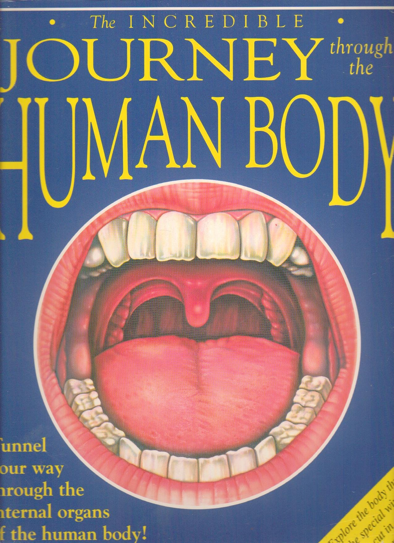 The Incredible Journey Through The Human Body Tunner Your Way